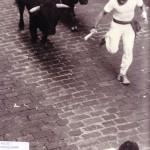 Julen guíando dos toros