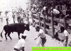Julen tirando del toro
