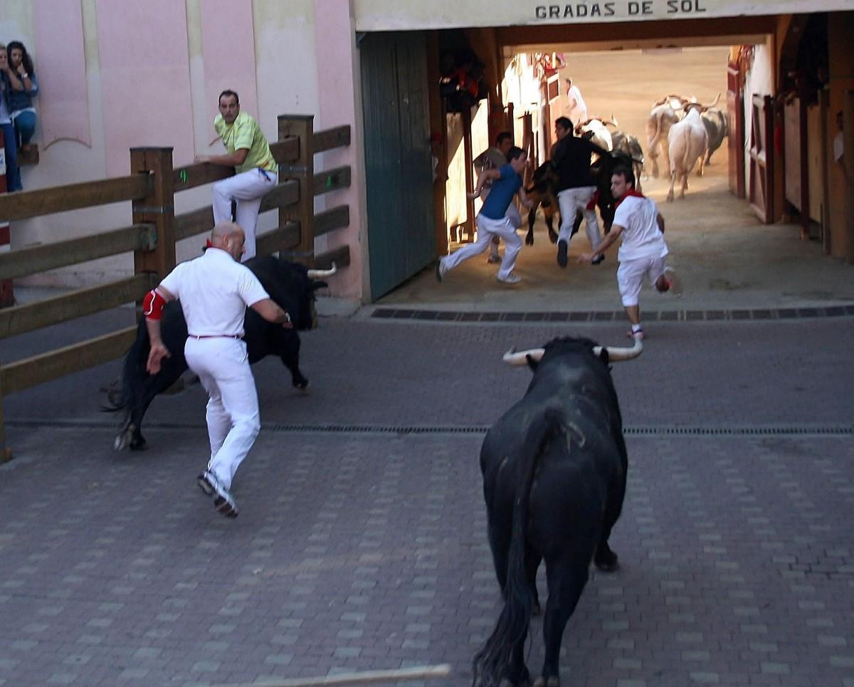 Entrando en el callejón de Tudela con el 5° toro